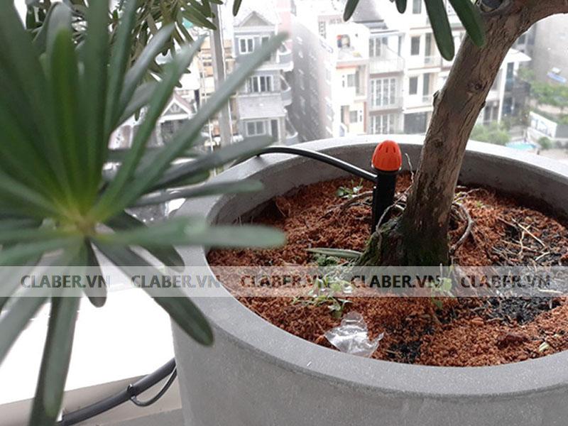 91228 dau phun 8 tia claber dep chau bon sai Đầu tưới 8 tia   Chân cắm/ 0 40 l/h adjustable shrubbler