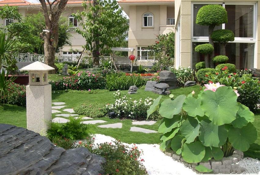 cay canh san vuon 850x Chăm sóc cây cảnh sân vườn   những lưu ý không thể bỏ qua