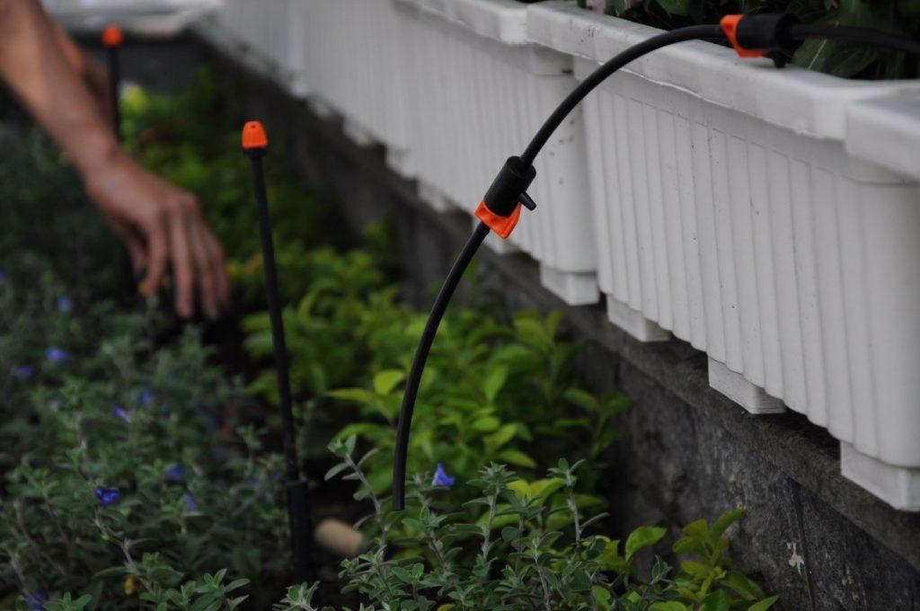 Thiết kế hệ thống tưới cây tự động. Bán thiết bị tưới nhỏ giọt, phun mưa cao cấp.