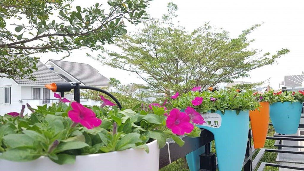 29033 Thiết kế hệ thống tưới tự động cho ban công rực rỡ sắc hoa