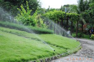 Thiết kế hệ thống tưới cây tự động, thiết kế hệ thống tưới phun mưa.