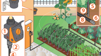 Thiết kế hệ thống tưới nhỏ giọt cho rau, thiết bị tưới tự động chất lượng cao.