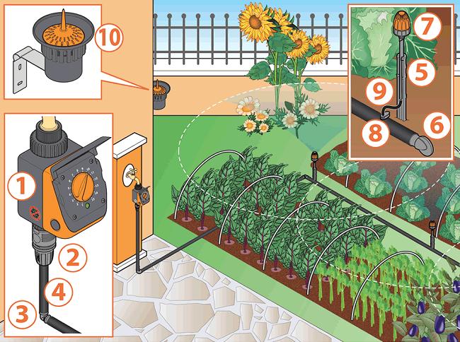 Thiết kế hệ thống tưới nhỏ giọt cho rau