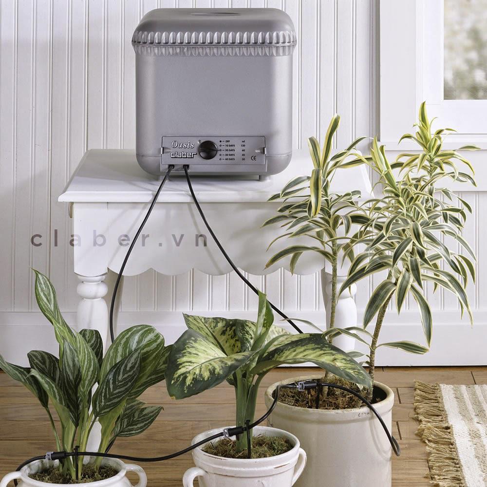 Oasis Thiết bị tưới tự động Italy cao cấp – chuyên dùng cho cây xanh trong nhà và văn phòng