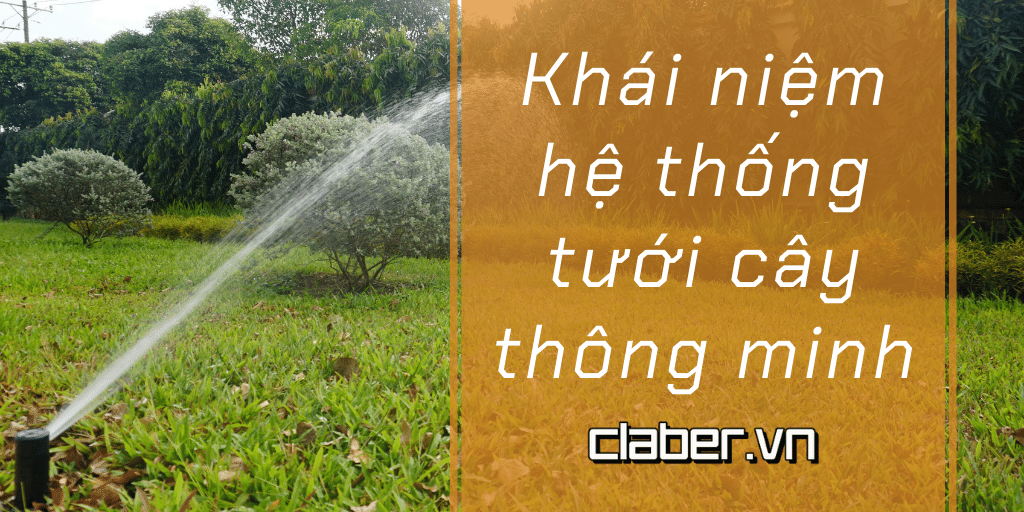 khai niem he thong tuoi cay thong minh