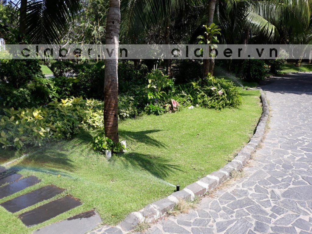 Carmelina5 1024x768 Hệ thống tưới tự động resort Vũng Tàu Carmelina