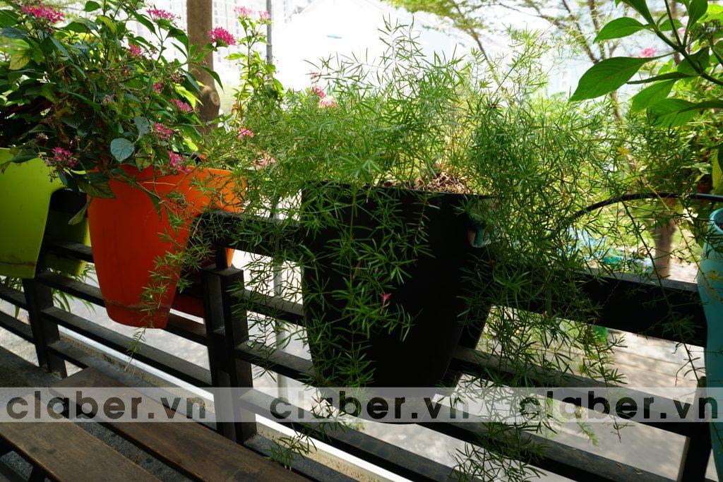 Ban cong 1 1024x683 Hệ thống tưới nhỏ giọt ban công – phủ xanh cuộc sống
