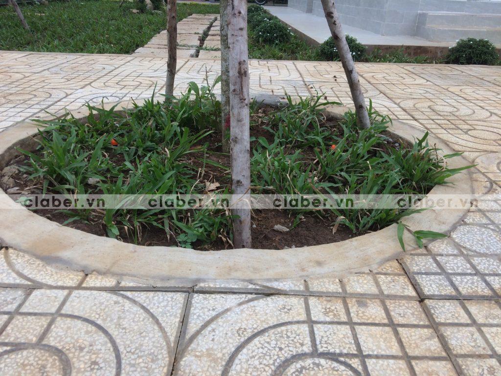 tuoi cay tu dong 37 1024x768 5 bước hướng dẫn lắp đặt hệ thống tưới cây tự động cho sân vườn biệt thự có sẵn cây cối
