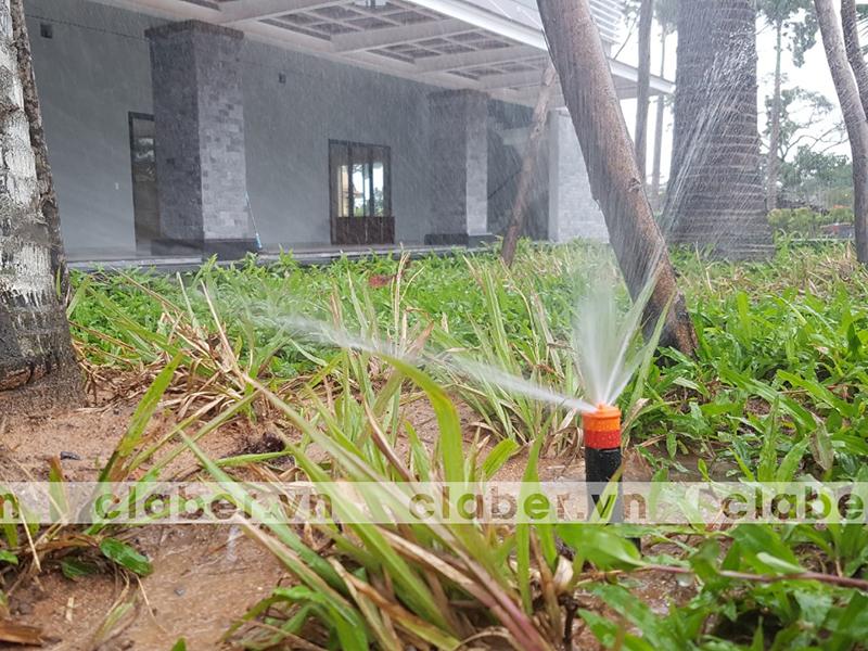 hệ thống tưới phun mưa cơ quan
