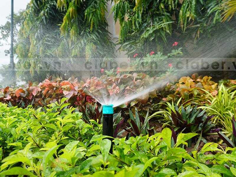 hệ thống tưới phun mưa vườn cây đa dạng
