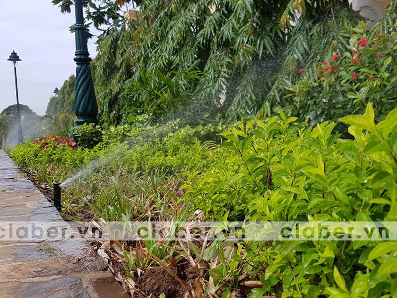 hệ thống tưới phun mưa vườn lớn