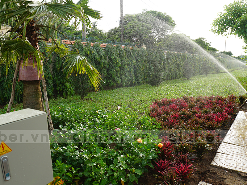 hệ thống tưới phun mưa vườn đa dạng cây