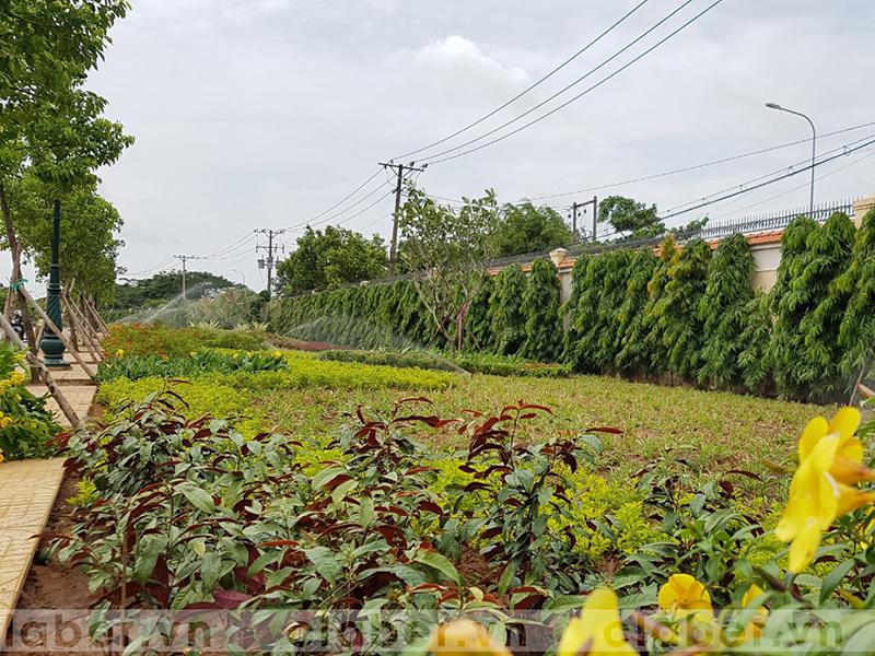 hệ thống tưới phun mưa vườn rộng