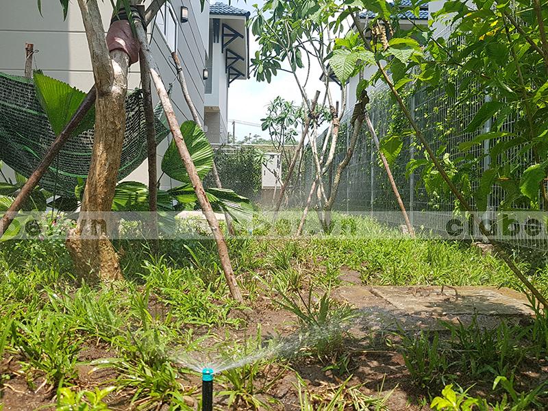 hệ thống tưới phun mưa vườn nhà