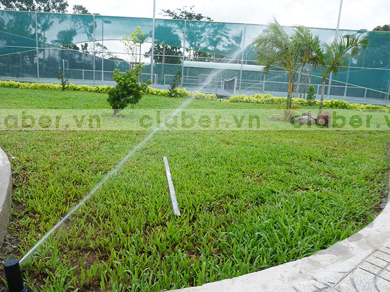hệ thống tưới phun mưa góc nhọn