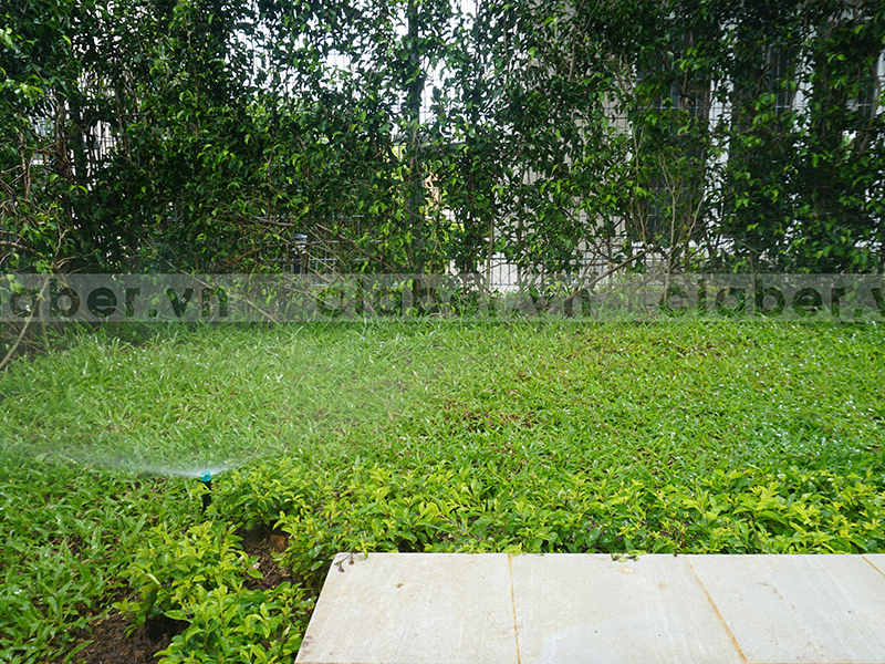 hệ thống tưới phun mưa góc vườn