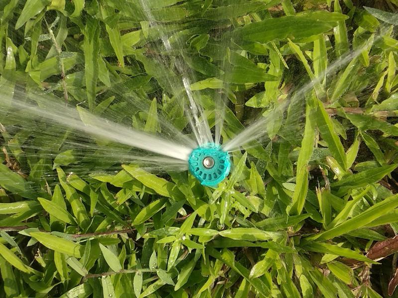 Trồng cỏ cảnh với thiết bị tưới cỏ chính hãng Italy