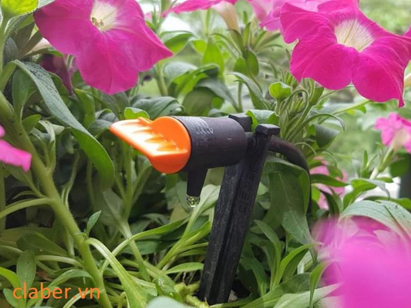 Thiết bị tưới rainbird thích hợp với loại cây trồng nào