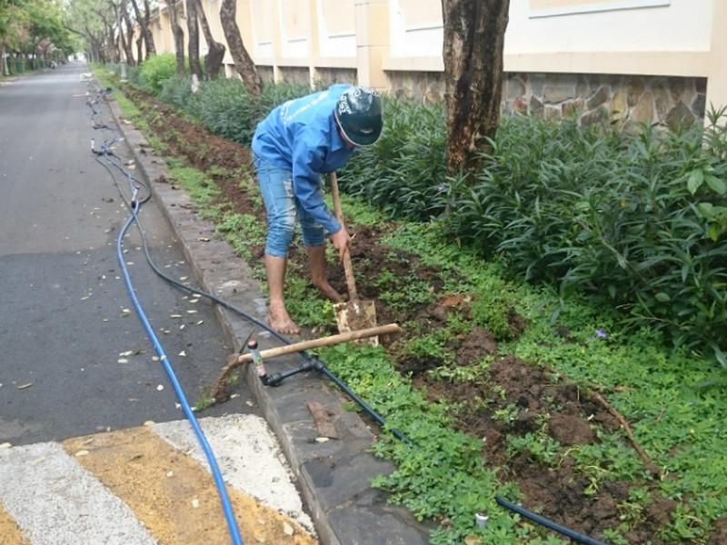 thiet bi tuoi 602 Kỹ thuật trồng cỏ cao sản với thiết bị tưới cỏ hiện đại