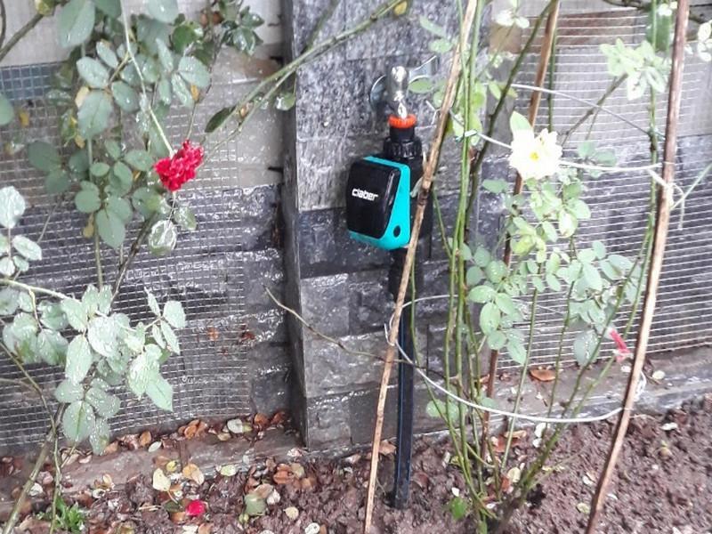 Tự chế thiết bị tưới cây cảnh đơn giản bằng những thứ bỏ đi