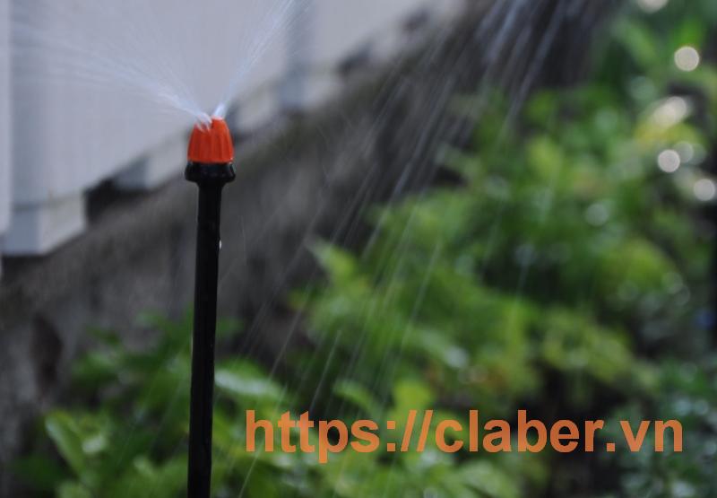 thiet bi tuoi phun suong danh cho loai cay nao Mách bạn các loại cây cần sử dụng thiết bị tưới phun sương