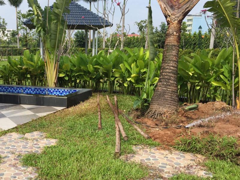 Top 10 đánh giá tốt về thiết bị tưới sân vườn từ khách hàng