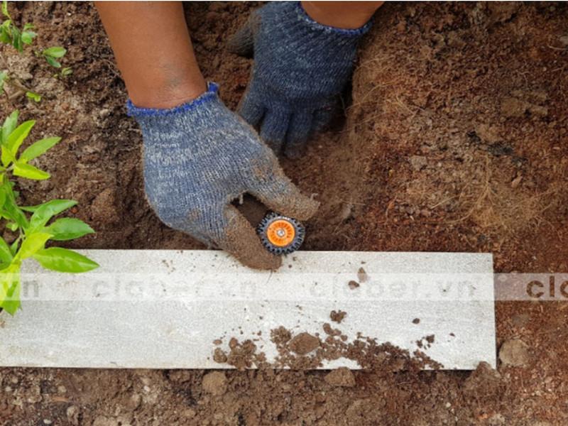 Mách bạn cách trồng lại hoa đào với thiết bị tưới cây tốt