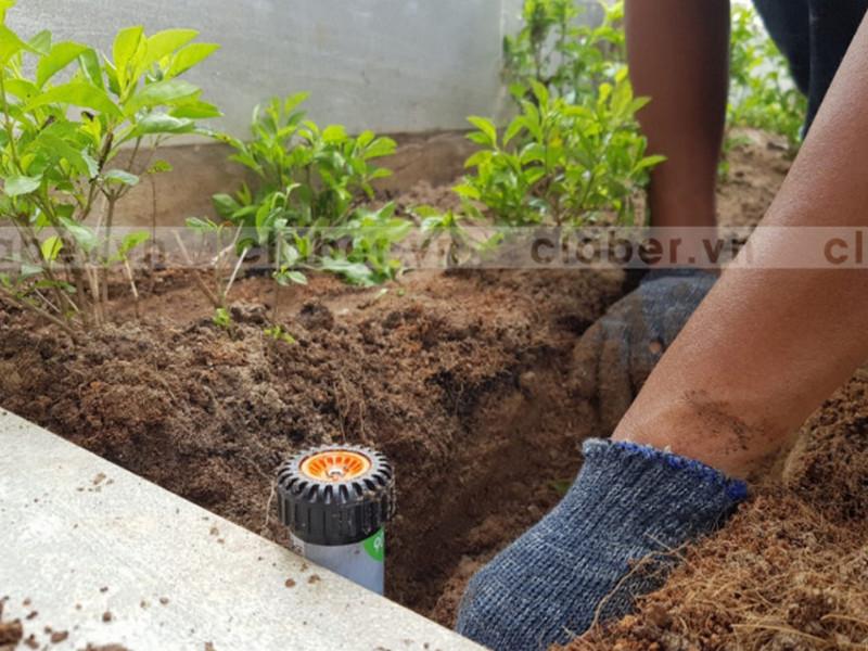 thiet bi tuoi 56879 Thiết bị tưới hoa tự động giúp bón phân dễ dàng cho cây