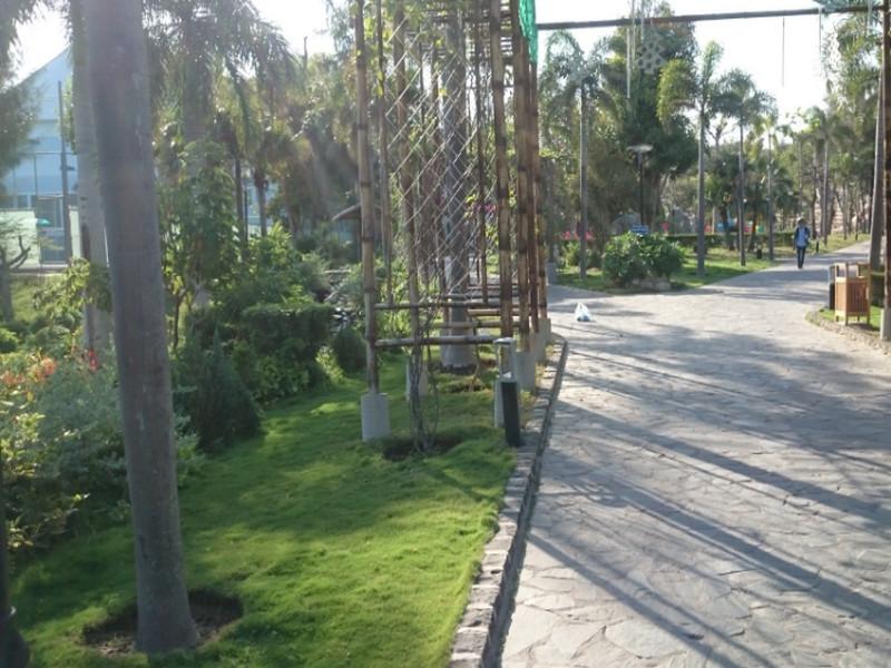 100 Địa chỉ cung cấp Thiết Bị Tưới Vườn uy tín nhất Việt Nam