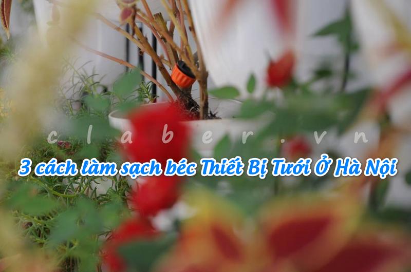 thiet bi tuoi 10 3 cách làm sạch béc Thiết Bị Tưới Ở Hà Nội siêu đơn giản