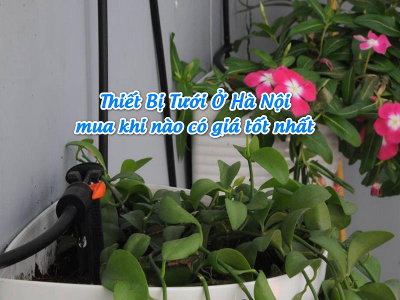 Thiết Bị Tưới Ở Hà Nội mua khi nào đề có giá tốt