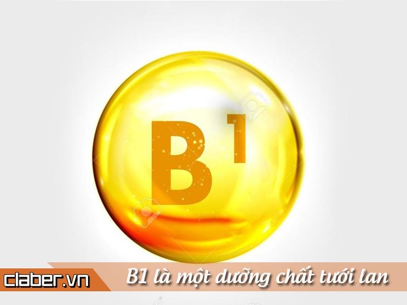 tuoi-cay-hoa-lan-bang-vitamin-b1