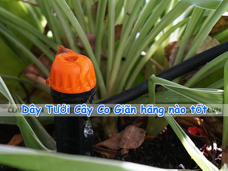day-tuoi-cay-co-gian-hang-nao-tot