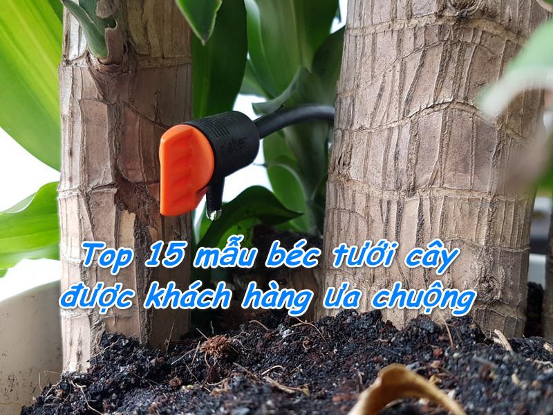 top-15-mau-bec-tuoi-cay-duoc-khach-hang-ua-chuong