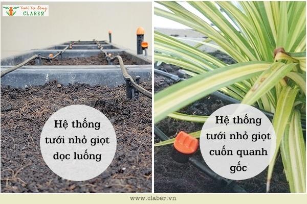 he thong tuoi nho hiot co may dang 1 Hướng dẫn cách phân loại hệ thống tưới nhỏ giọt có mấy dạng?