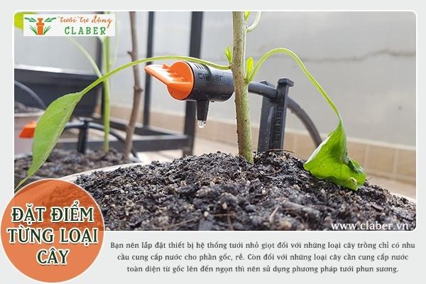 thiet bi tuoi nho giot 1 Nên lựa chọn thiết bị hệ thống tưới nhỏ giọt hay phun mưa?