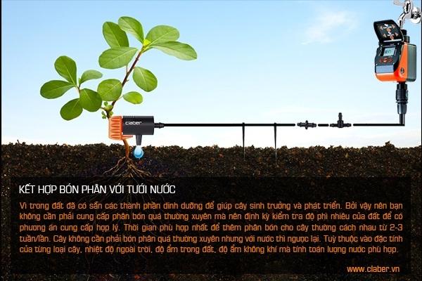 phan bon cay canh 2 Nên sử dụng loại phân bón nào để chăm sóc cho cây cối, cảnh quan?