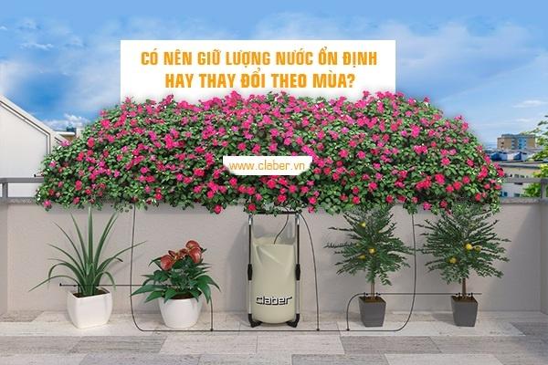 tuoi cay hop ly 2 Tưới cây hợp lý: nên giữ ổn định lượng nước hay thay đổi theo mùa?