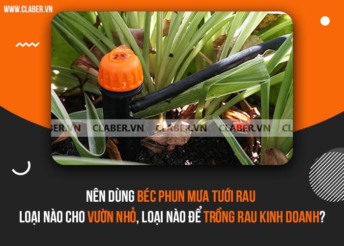 Nên dùng béc phun mưa tưới rau loại nào cho vườn nhỏ