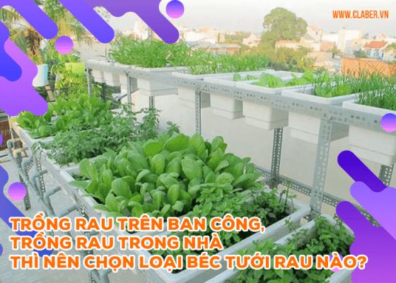 Trồng rau trên ban công, trồng rau trong nhà thì nên chọn loại béc tưới rau nào?