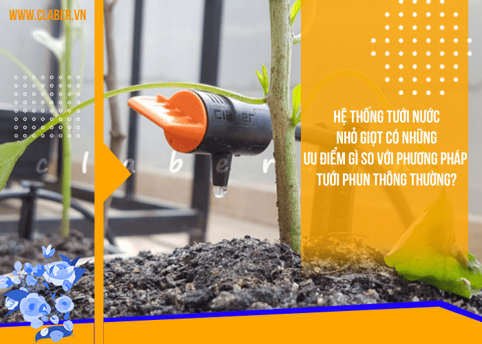 Hệ thống tưới nước nhỏ giọt có những ưu điểm gì so với phương pháp tưới phun thông thường?